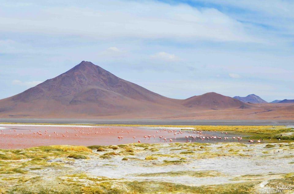 Voyage au Pérou et en Bolivie : 3 semaines d'aventure