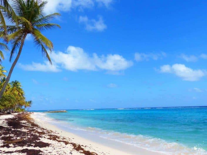 Guadeloupe : escale au cœur des Caraïbes