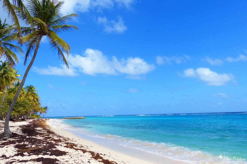 A la découverte de la Guadeloupe, île paradisiaque des Caraïbes